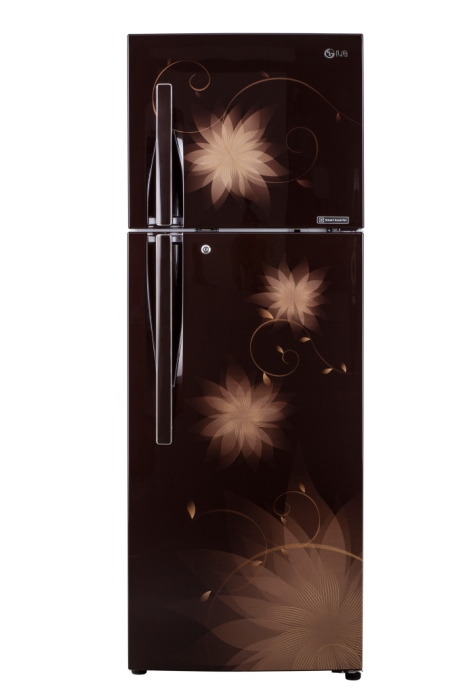 Hazle Spring - Smart Inverter 2.0 Refrigerator